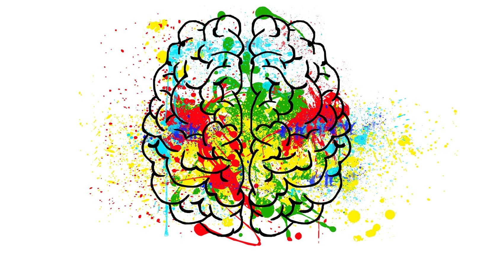 Ученые рассказали о способности мозга предсказывать будущее