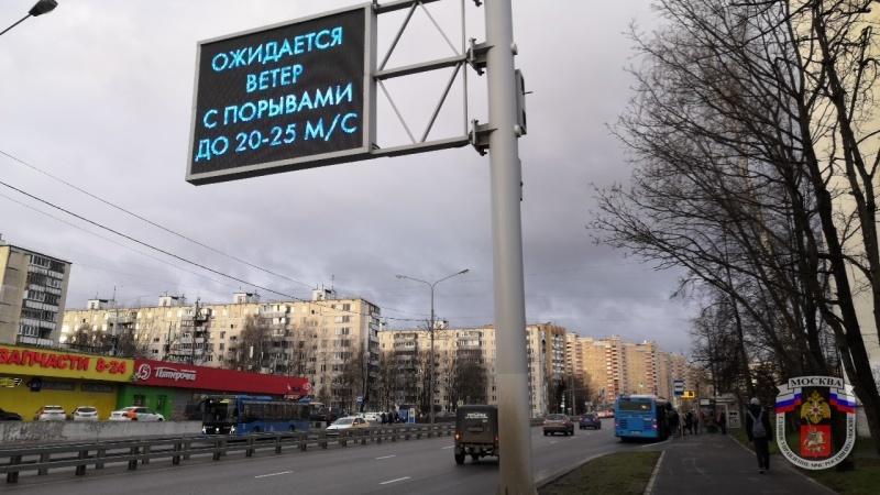 В Москве из-за ветра повалены десятки деревьев