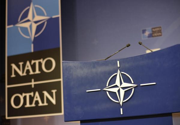 Саммит НАТО не объявит сроки вступления в альянс Украины и Грузии
